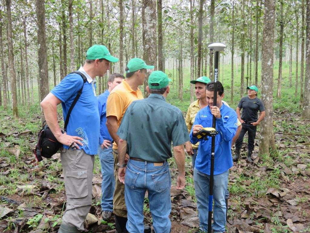 Teakbaum rinde  Februar 2015   Life Forestry Plantagen